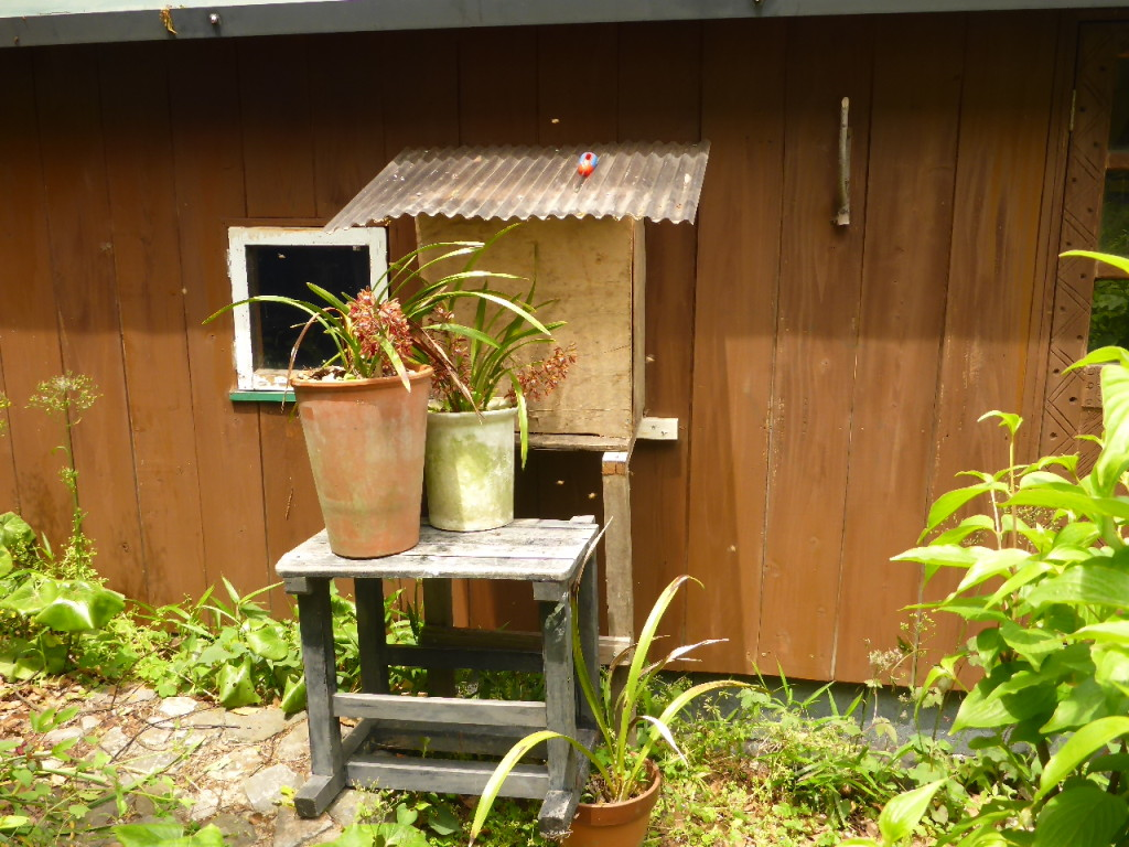 みかわ工房の庭に来た日本ミツバチの巣箱
