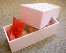 試作した箱に貝合わせを入れてみます。